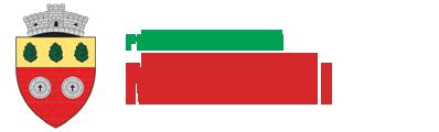 Primaria Mihaileni